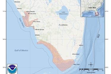 map-smalltooth-sawfish-critical-habitat-Florida-SERO.jpg