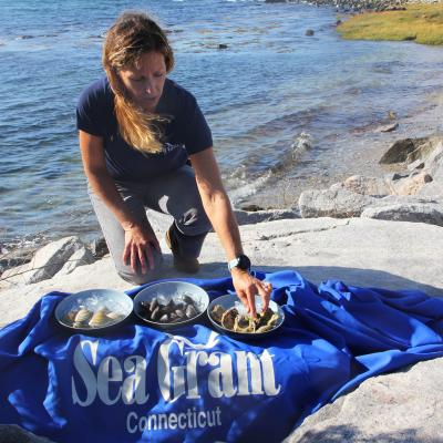 Tessa Getchis knees on a large rock along the shoreline with three bowls of local shellfish and the Connecticut Sea Grant banner in front of her.