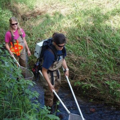 two women wading in a stream, the woman in front electrofishing