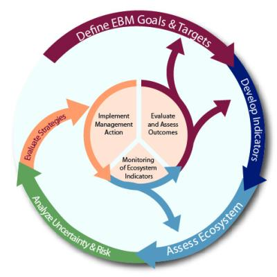 Integrated Ecosystem Assessments loop