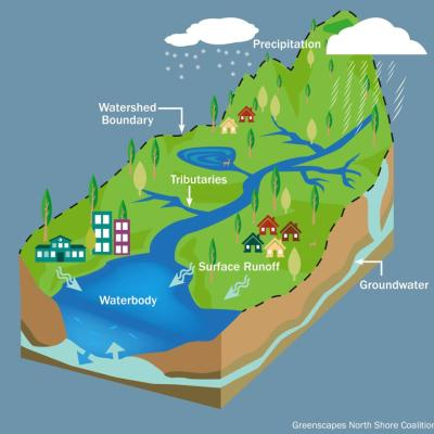 Graphic depicting a watershed
