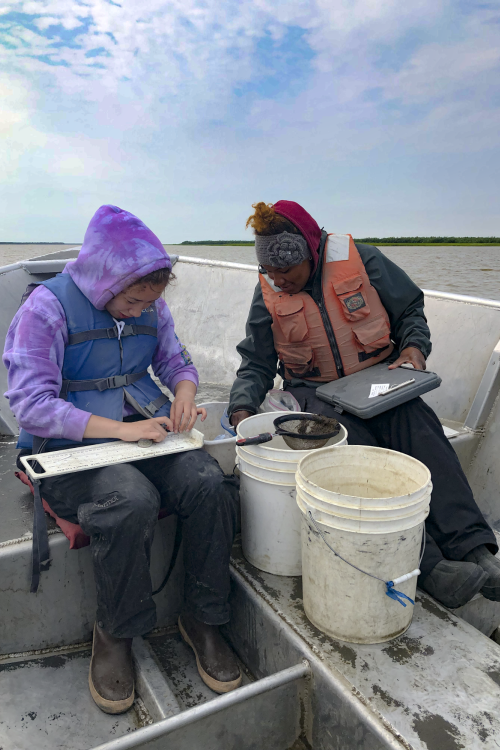 Photo of two technicians in a boat measuring juvenile salmon and recording lengths.