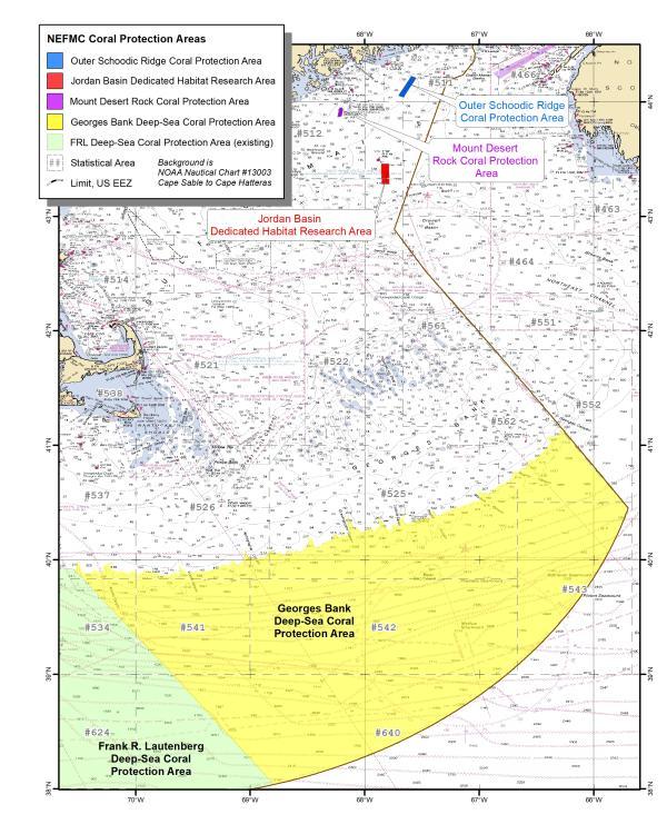 Omnibus Deep-Sea Coral Amendment