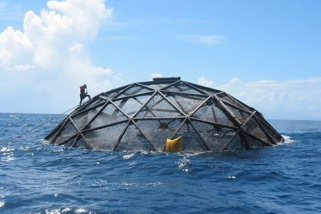 An Aquapod cage, a giant spherical free-range fish farm, floats offshore.