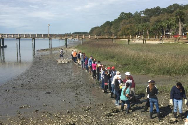Volunteers construct an oyster reef near Alljoy Landing in Bluffton, South Carolina.