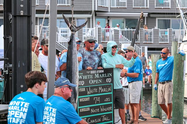 Fishing tournament participants pose next to their landed white marlin