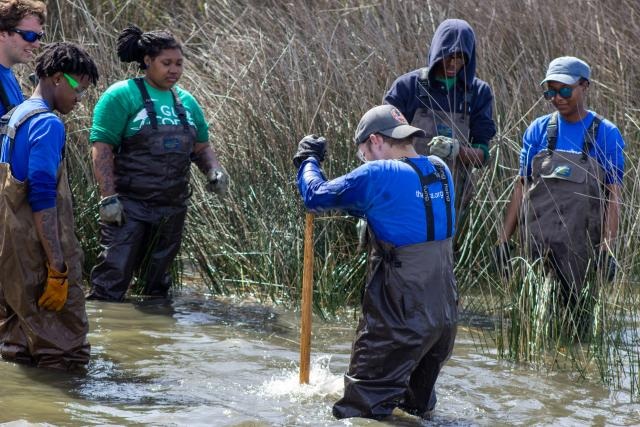 Six young people in waders working in water surrounded by vegetation, one has a shovel digging in the water.