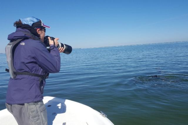 Laura Dias photographing  bottlenose dolphins during a photo-identification project.