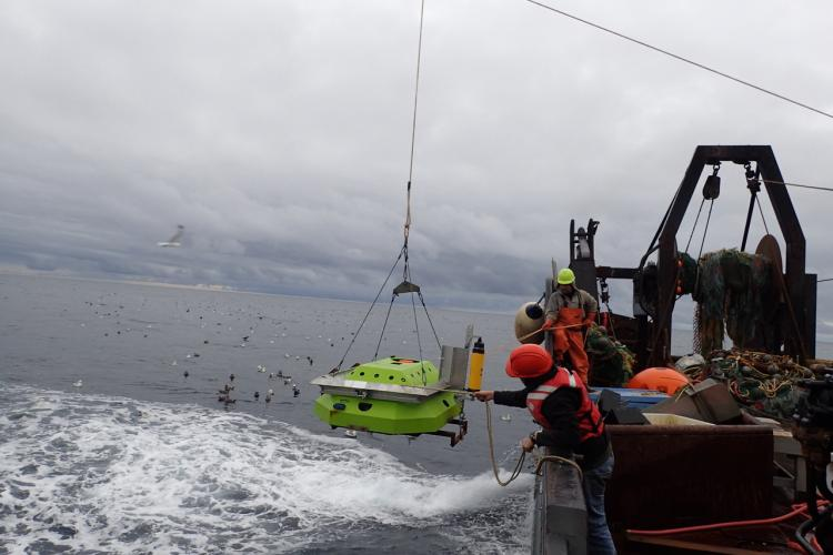 Deploying the echosounder to monitor pollock movements in the Bering Sea