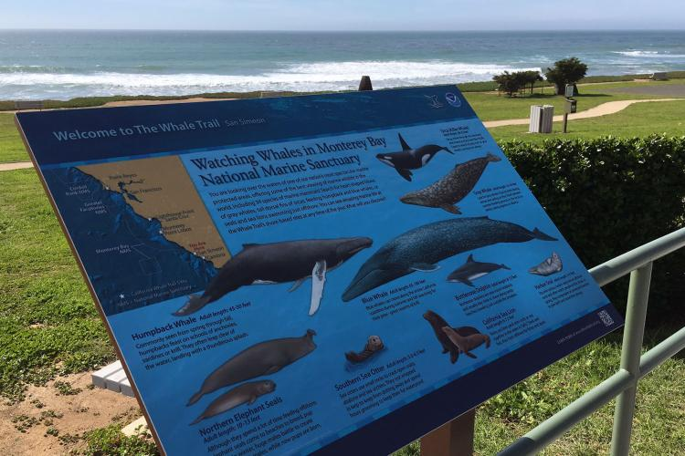 Whale Trail sign