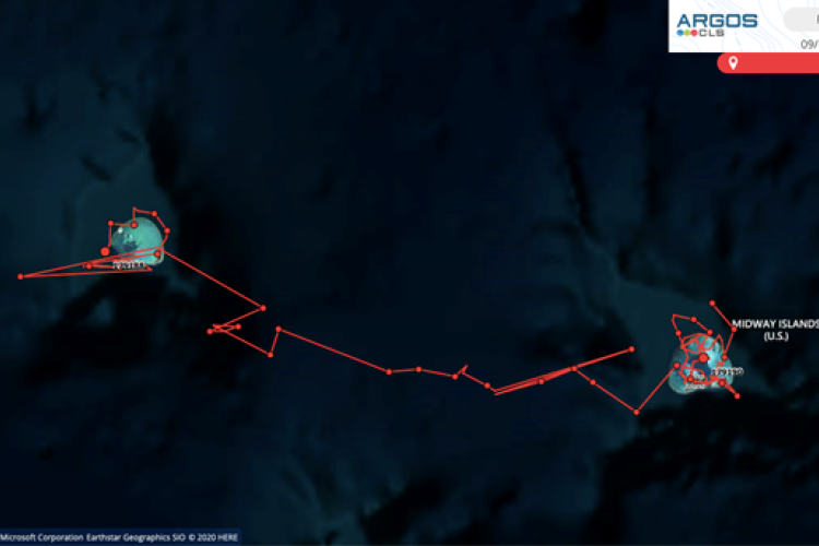 Map of explorer seal track.