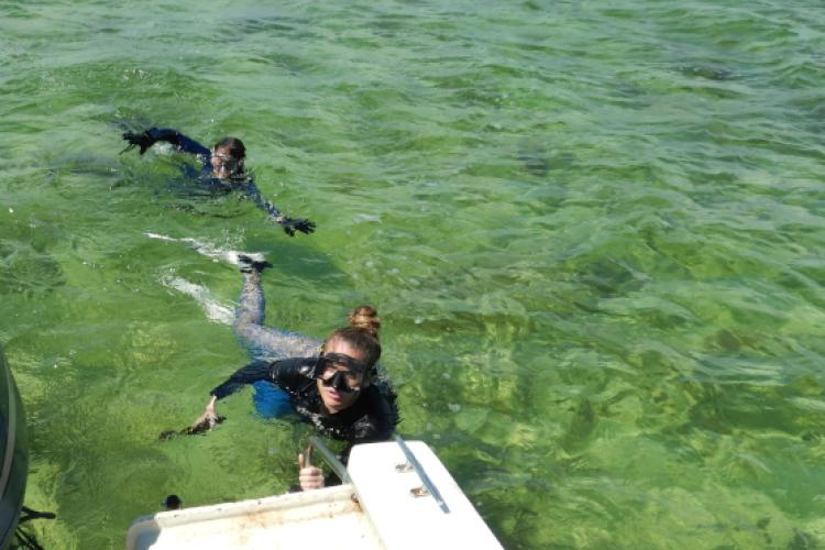 University of Miami divers deploying an acoustic receiver