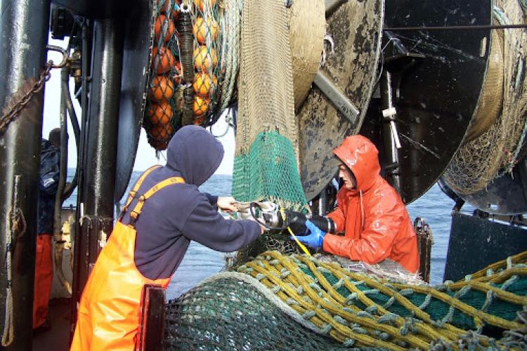 Men attaching data recorder to fishing net.