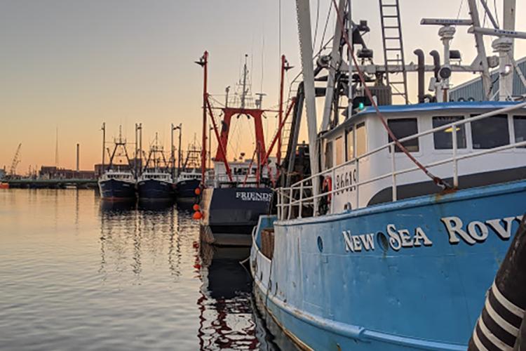 Fishing boats at dock.