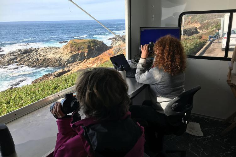 Researchers counting gray whales