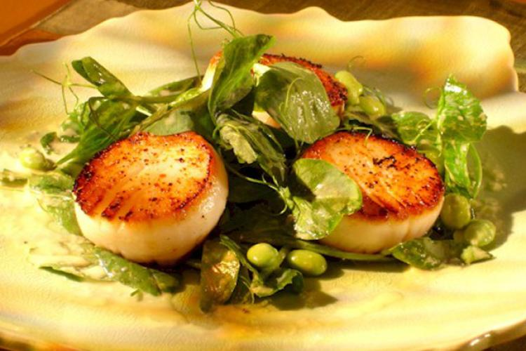 Three pan-seared sea scallops plated atop leafy greens with vinaigrette.