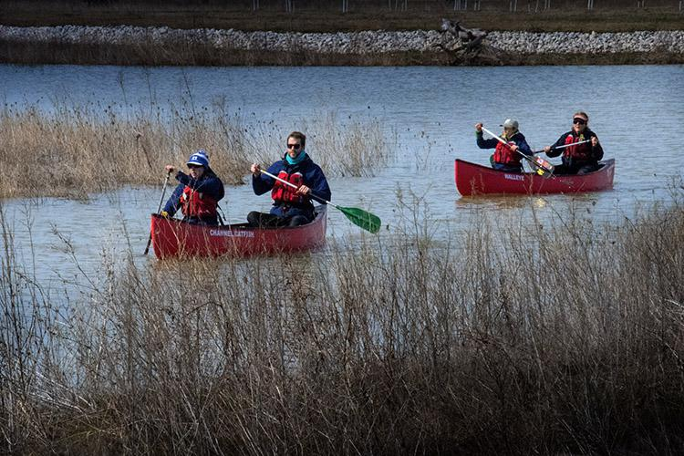 Four people in two red canoes paddle through a wetland
