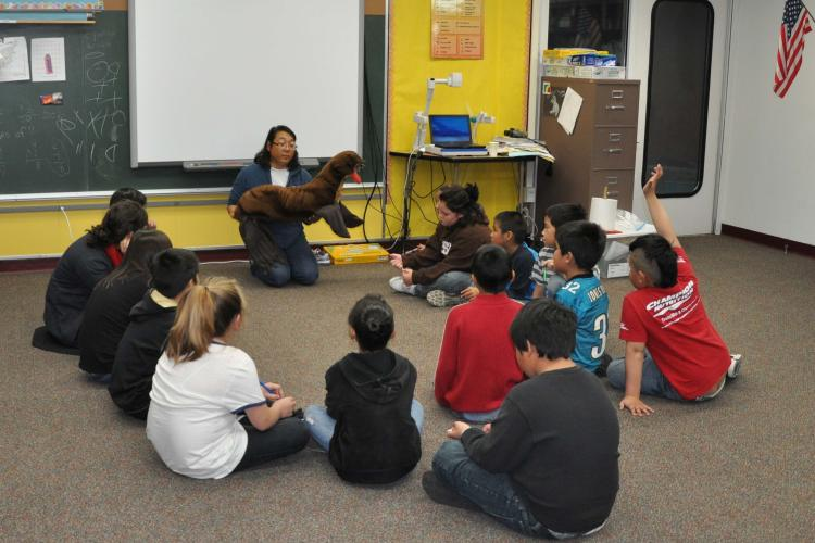 Photo of Lisa Hiruki-Raring teaching students in a class room with a northern fur seal plush toy..