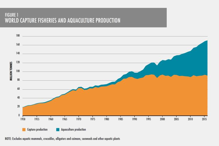 Graph illustrating capture production and aquaculture production; 2018.