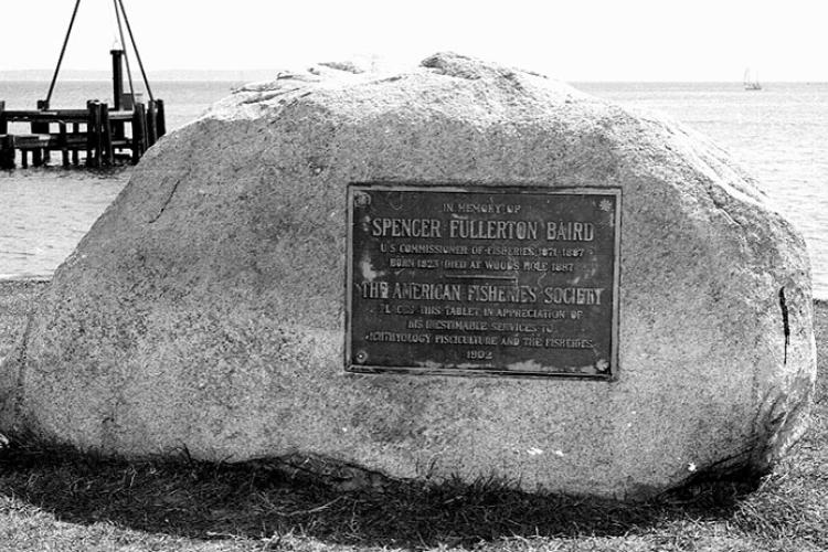Plaque on granite boulder by Woods Hole Laboratory in tribute to Spencer Baird