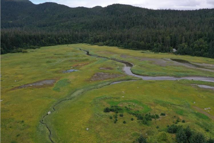 Lower reaches of Mink Creek, Alaska.
