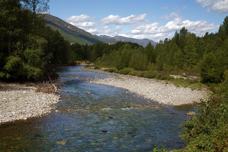 A rocky riverbed with trees and hills in the background