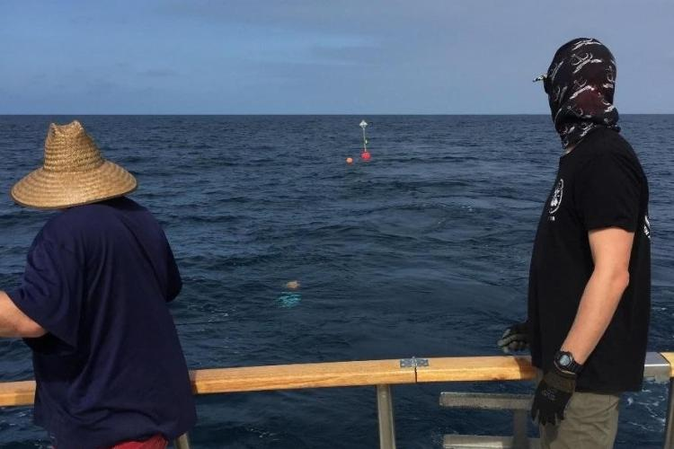 Drifting acoustic recorders deployed 55 miles off Oxnard, California.