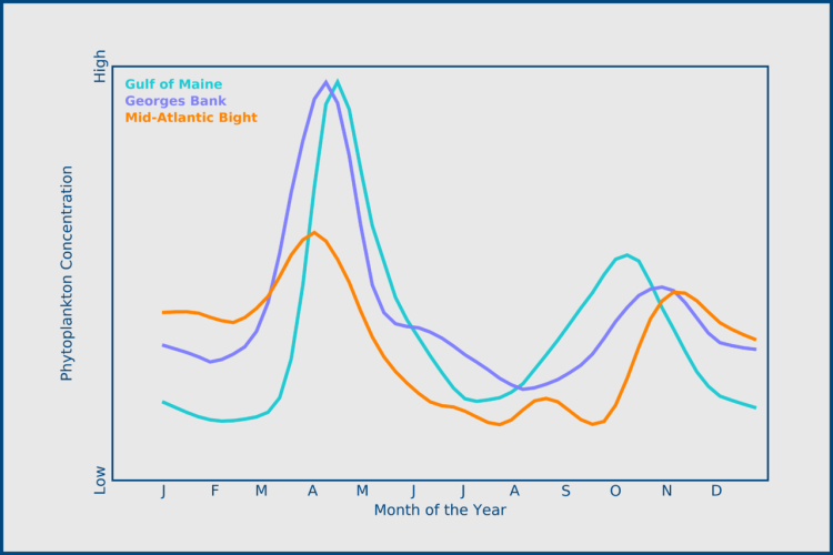 Figure showing the monthly concentrations of phytoplankton in the Gulf of Maine, Georges Bank and Mid-Atlantic Bight