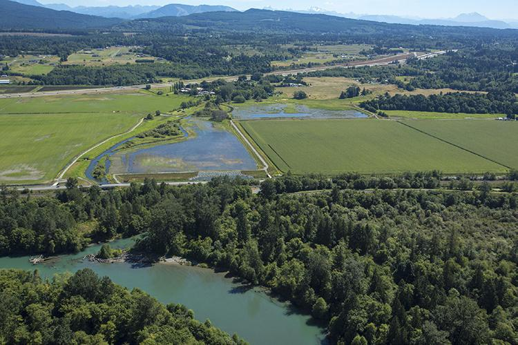 Aerial photo of wetlands surrounded by farm fields and forest