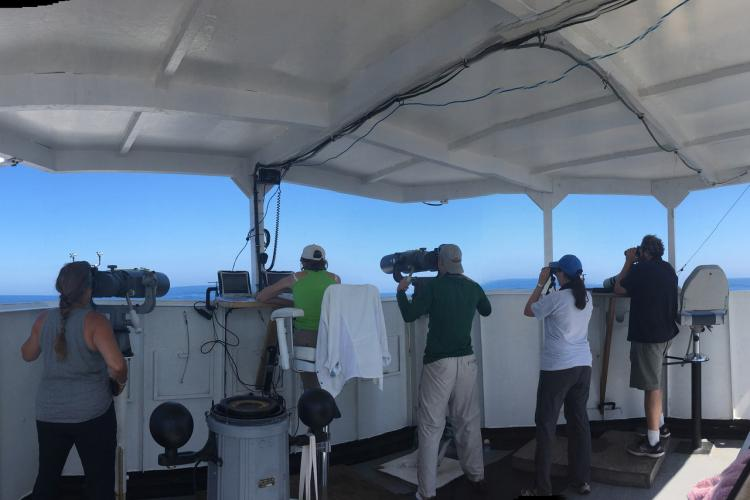 Observers aboard the deck of a ship.