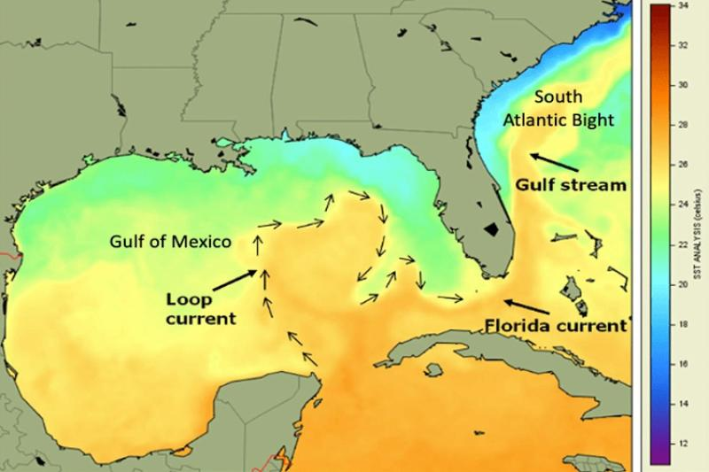 Image of map showing the Gulf of Mexico and South Atlantic Bight, as well as the general location and direction of the Loop current, Florida current and Gulf Stream showing sea surface temperature over the region in degrees Celsius..