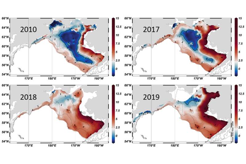Heat map showing variations in size of the Bering Sea cold pool in 2010, 2017, 2018 and 2019.