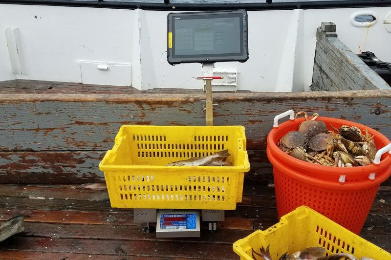 An OPTECS portable sampling station in use on a fishing vessel.