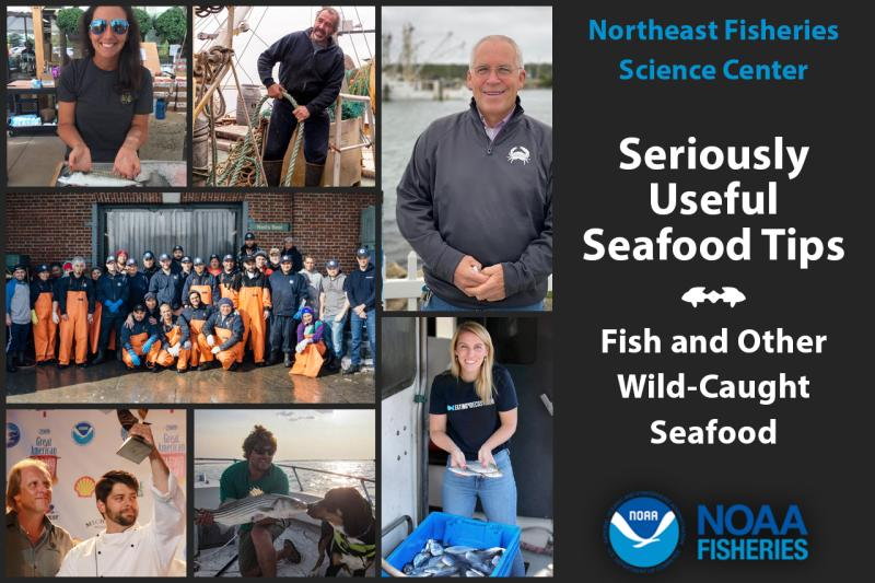 Northeast Fisheries Science Center fish and wild caught seafood stakeholders and industry partners graphic