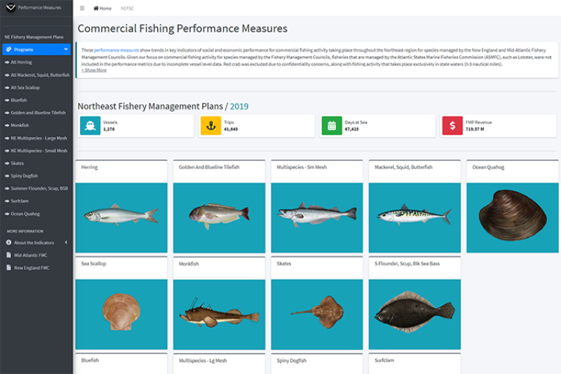 landing page for northeast commercial fishing performance measures. Text with images of fish, organized by fishery management plan