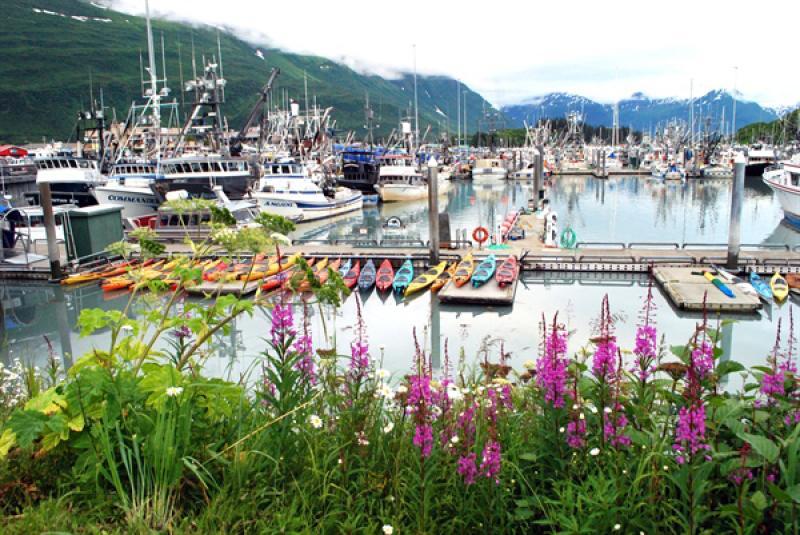 Harbor in Valdez, Alaska