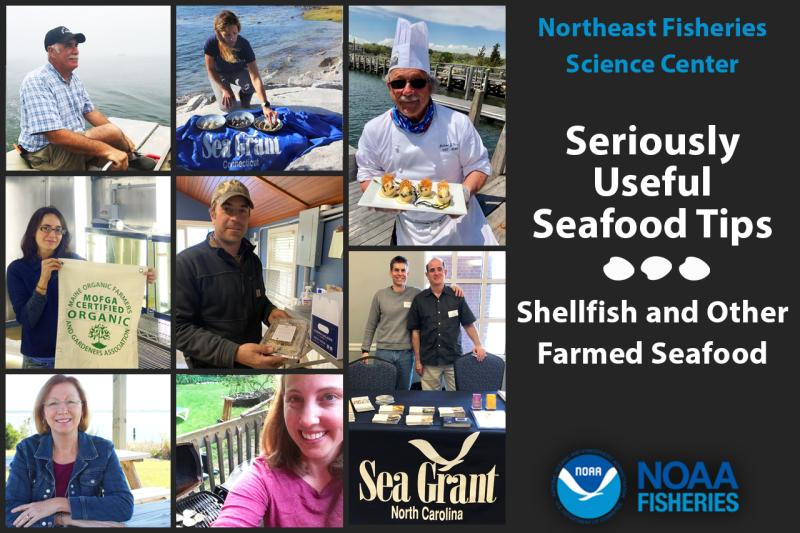 Northeast Fisheries Science Center shellfish and farmed seafood stakeholders and industry partners graphic