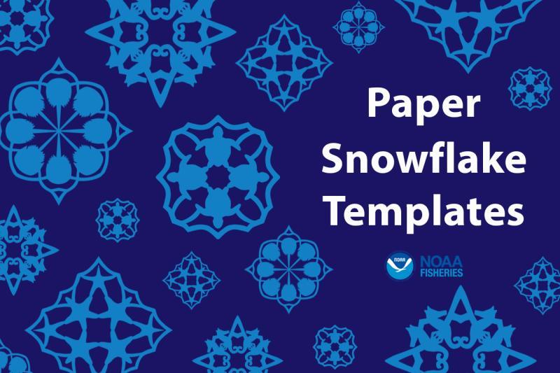 Graphic of four Woods Hole Science Aquarium snowflake templates