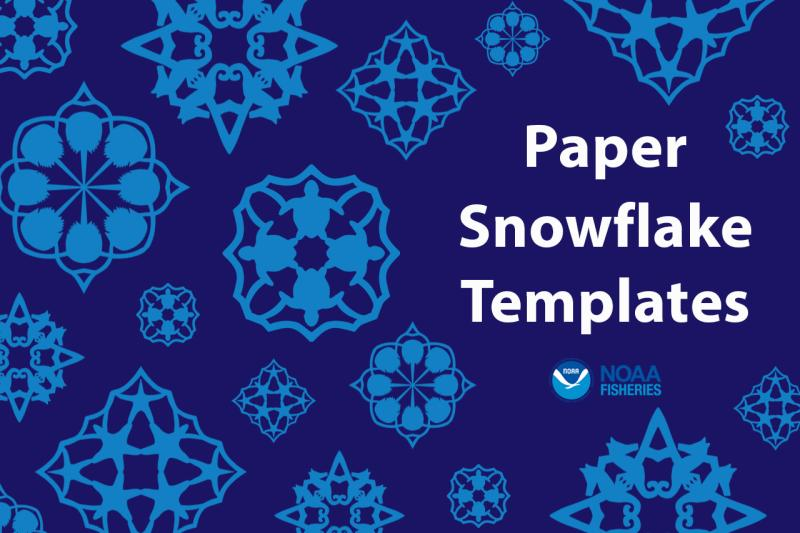 Graphic of four Woods Hole Science Aquarium snowflake templates