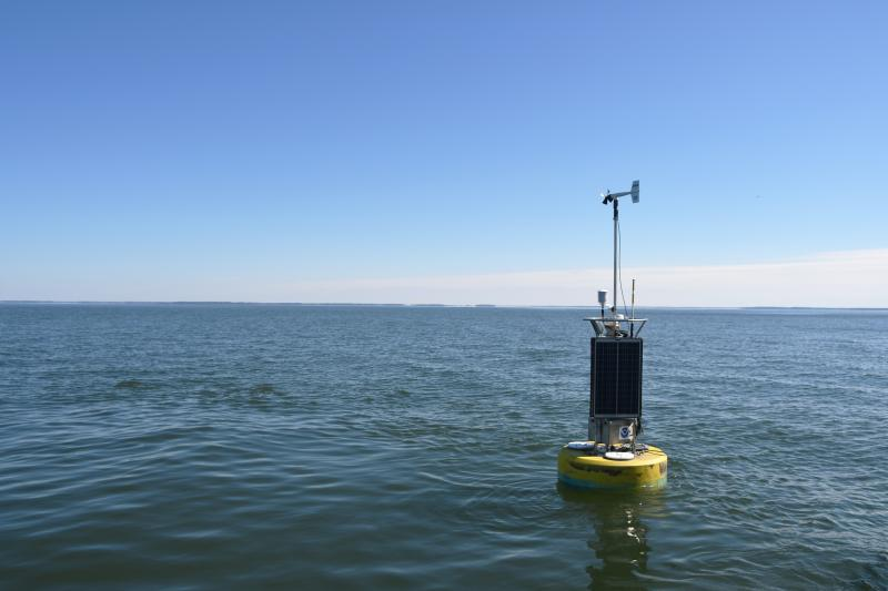 The yellow NOAA CBIBS buoy floats in calm waters at Gooses Reef, Maryland.