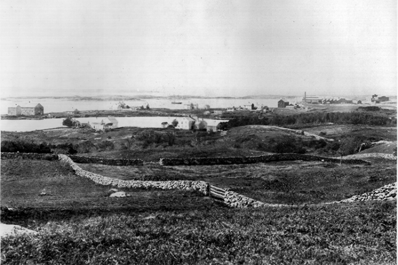 View of Woods Hole from 1880.