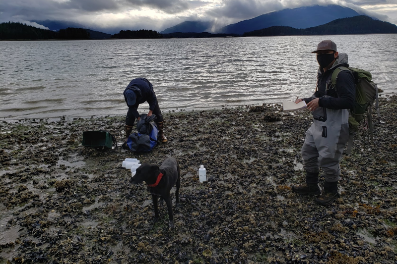 Photo of two researchers with water sample bottles and a dog near the waters edge.