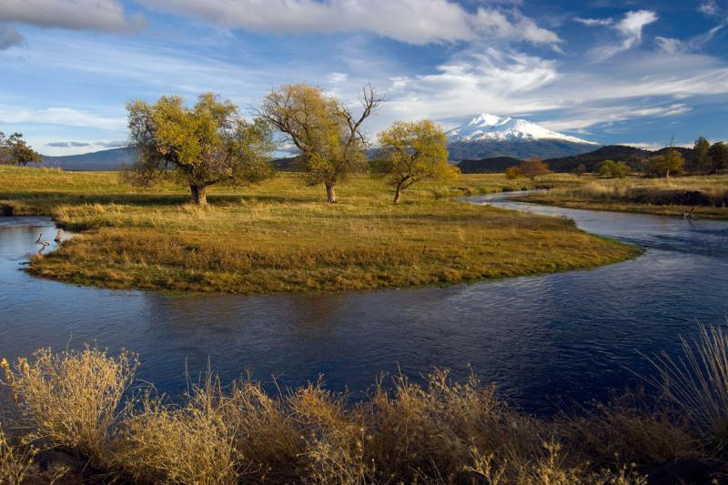 Big Springs Creek with Mount Shasta in the background