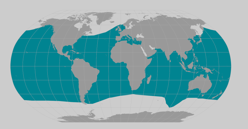 Cuvier's beaked whale range map.