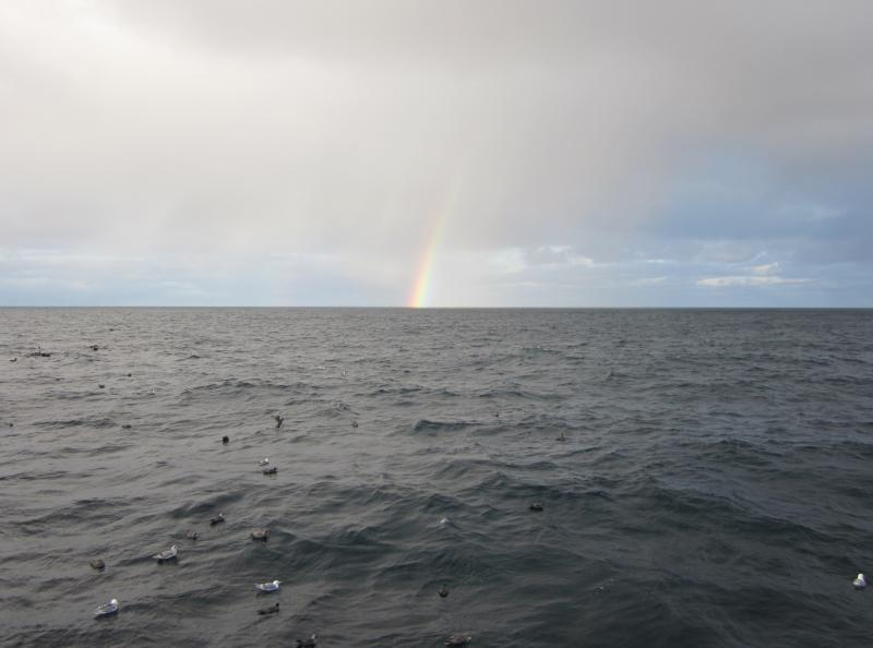 Photo of Bering sea with seabirds on the surface and a rainbow on the horizon.