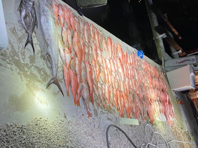 Photo of Danzig's illegal catch