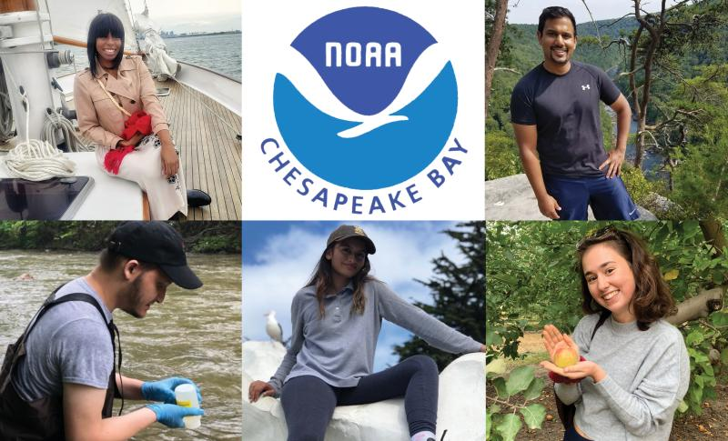A collage of portraits of NOAA Chesapeake Bay Office 2021 interns