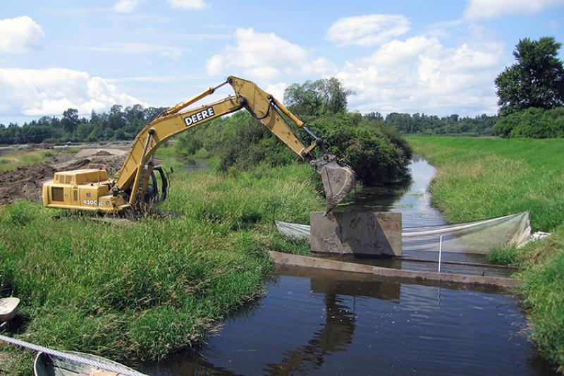 A backhoe near a stream in a marsh