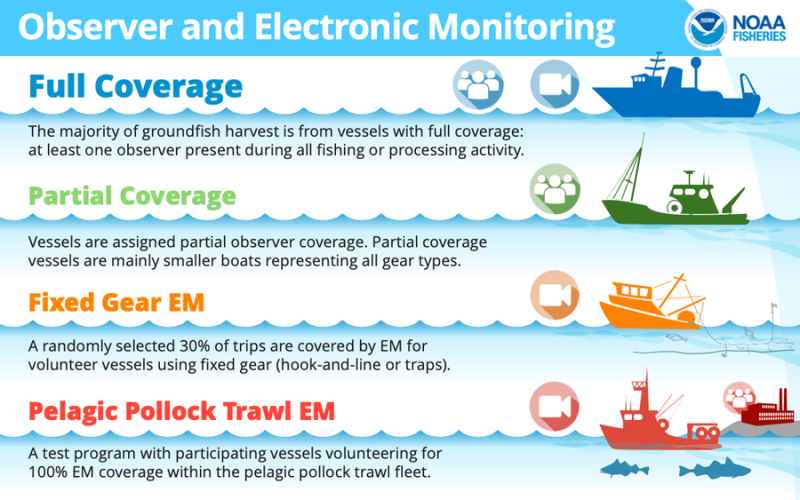 Infographic showing four monitoring coverage categories