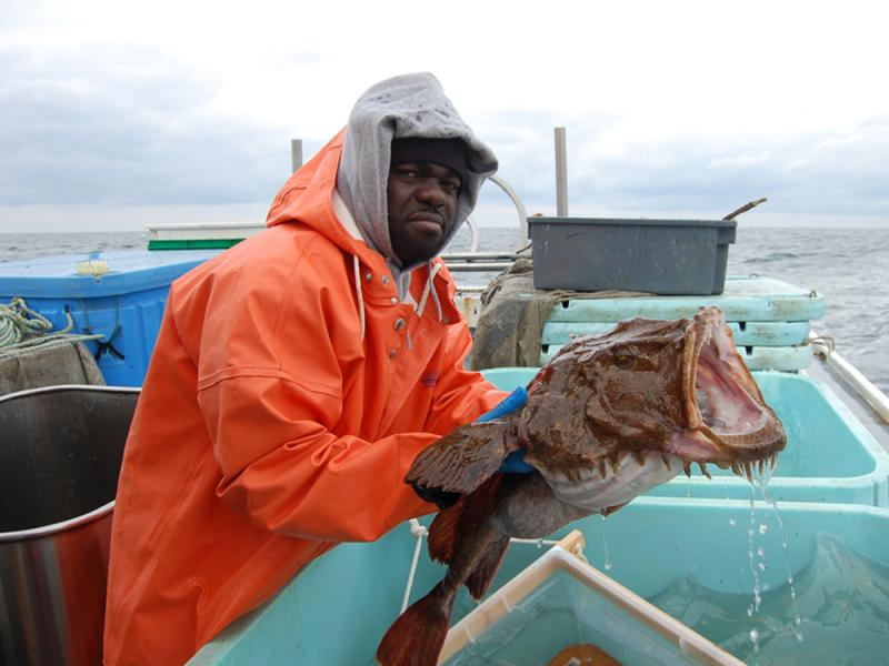 Larry Alade holding a goosefish with it's mouth open over blue bins.